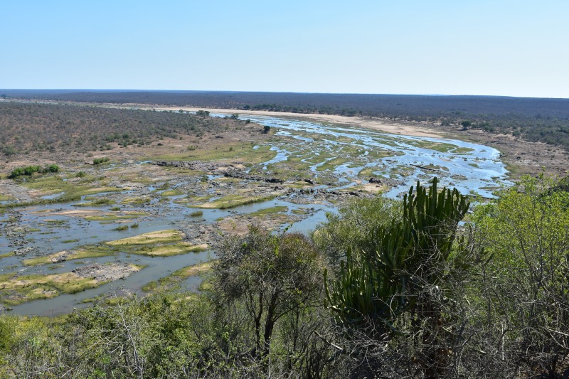 View from Olifants Camp