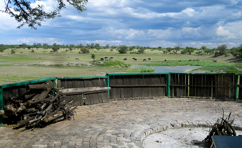 View from the boma at Botsalano Game Reserve
