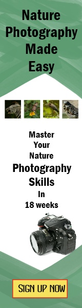 Nature photography course