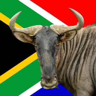 BlueGnu - all about South Africa - towns, places of interest, animals and plants
